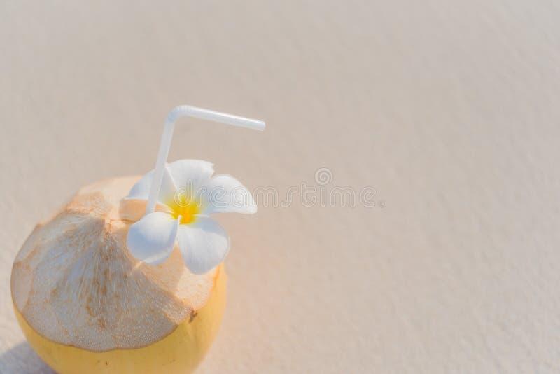 Kokosnotencocktail stock afbeelding
