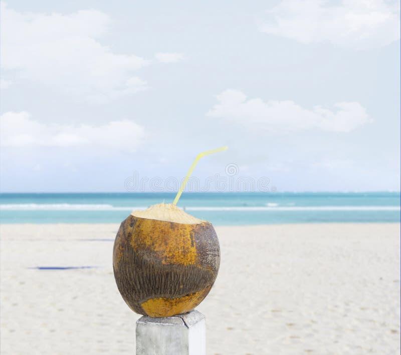 Kokosnotendrank met een stro op een zandig strand royalty-vrije stock fotografie