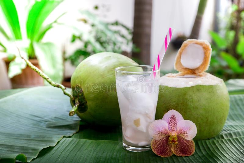 Kokosnotensap stock afbeelding