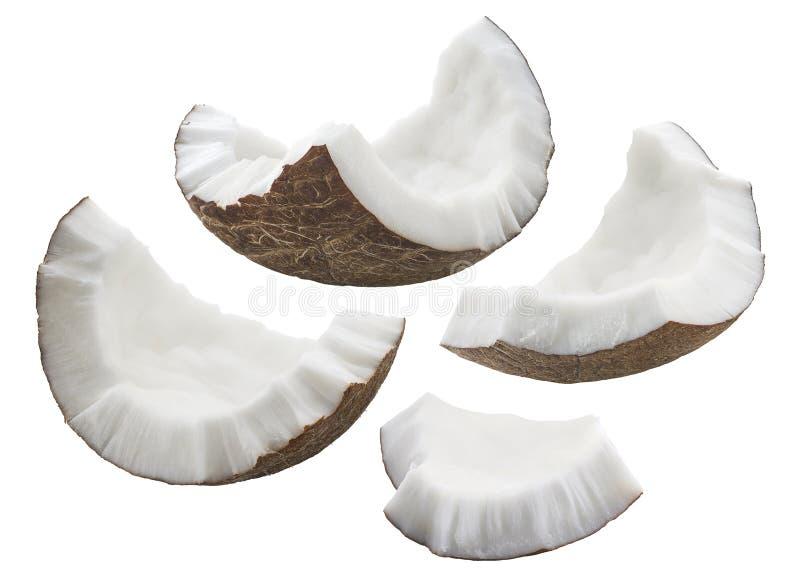 Kokosnotenshell stukken geplaatst die op witte achtergrond worden geïsoleerd royalty-vrije stock foto