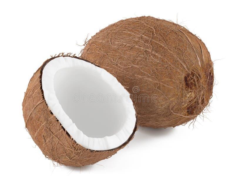 Kokosnuss  stock abbildung