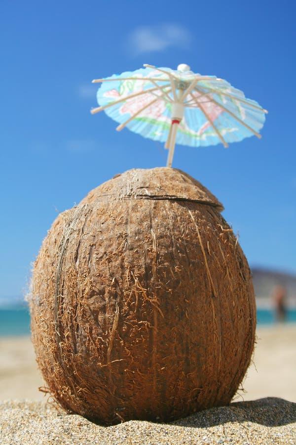 Kokosnuss-Cocktail lizenzfreies stockbild