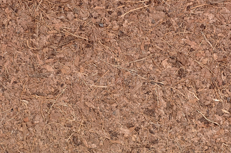 Kokosnuss-Coir-Makro lizenzfreies stockfoto