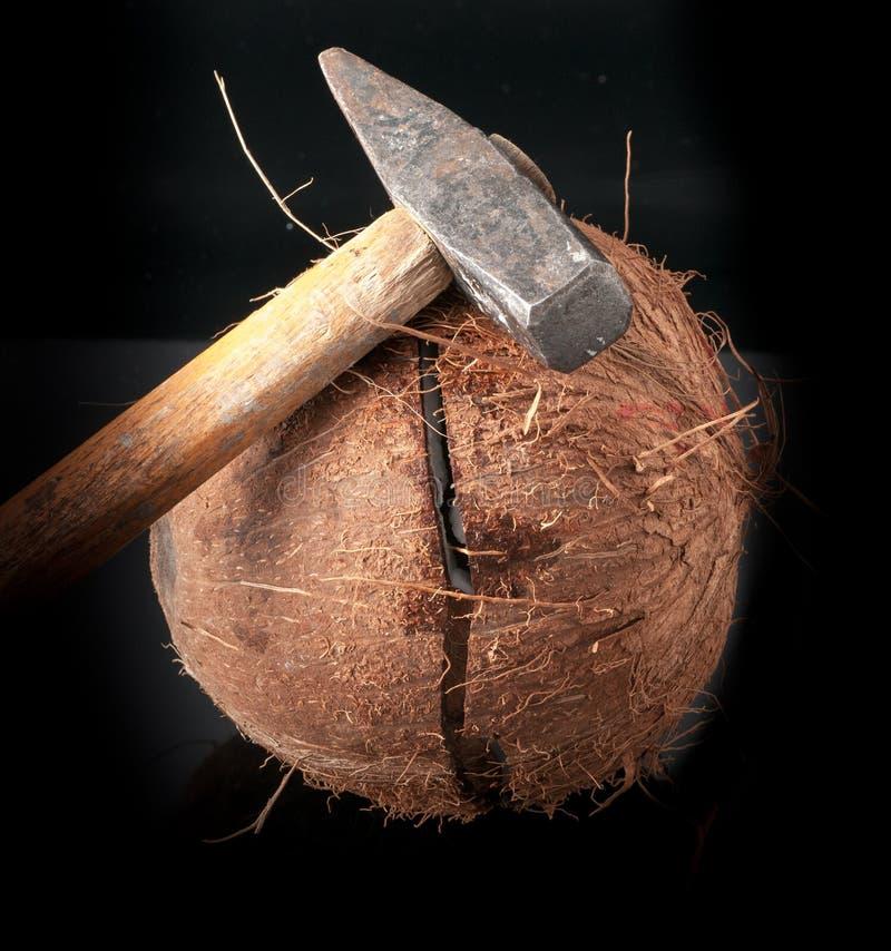 Kokosnuss eingelaufen Hälfte mit Hammer lizenzfreie stockfotografie