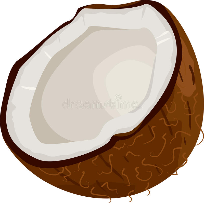 Kokosnuss-Ikone stockfotos