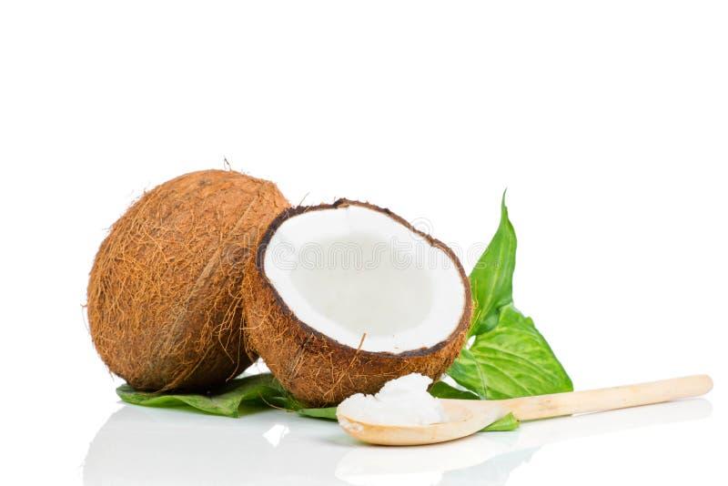 Kokosnuss mit grünem Blatt lizenzfreie stockfotografie
