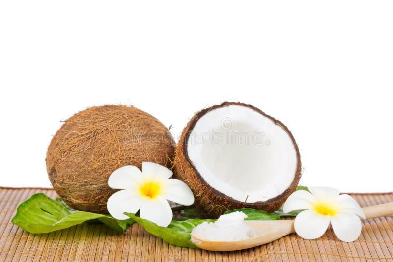 Kokosnuss mit grünem Blatt stockbild