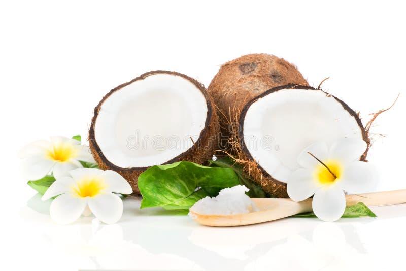 Kokosnuss mit grünem Blatt lizenzfreies stockfoto