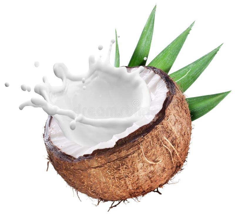 Kokosnuss mit Milchspritzen nach innen stockbild
