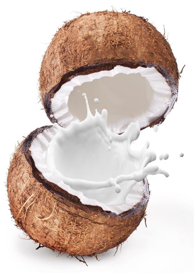 Kokosnuss mit Milchspritzen nach innen lizenzfreie stockbilder