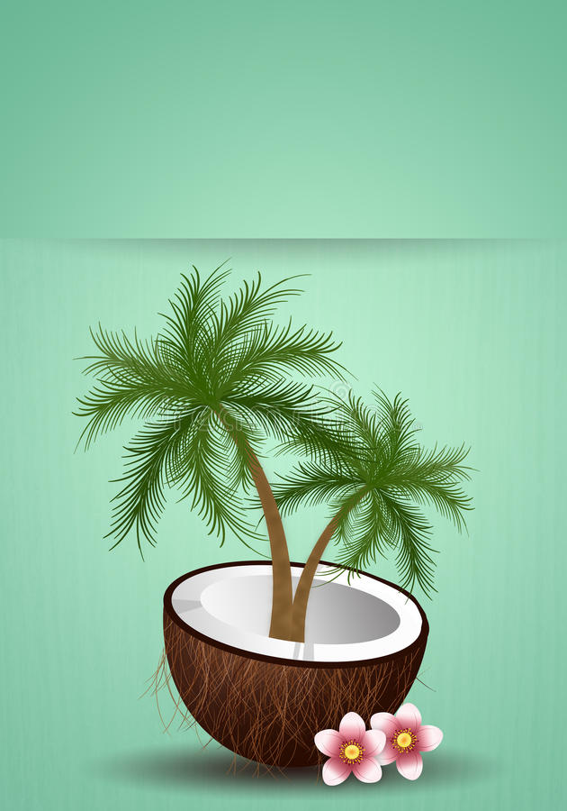 Kokosnuss mit Palme stock abbildung