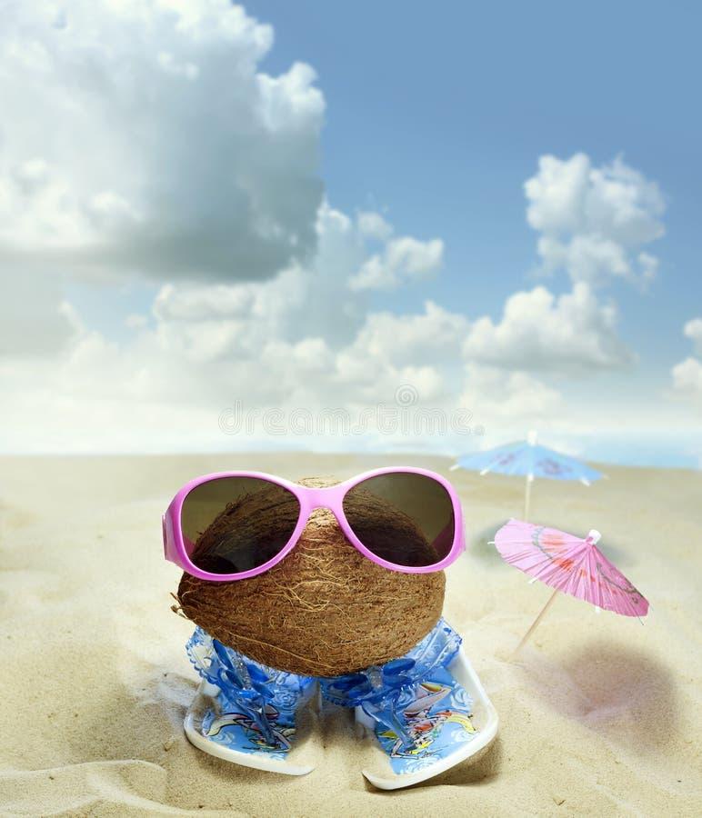 Kokosnuss am Strandspaßkonzept lizenzfreies stockfoto