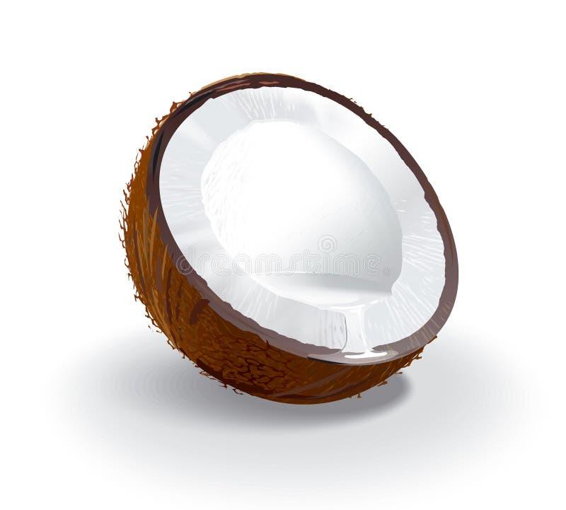 Kokosnuss- und Kokosnuss `s Milch lizenzfreie abbildung