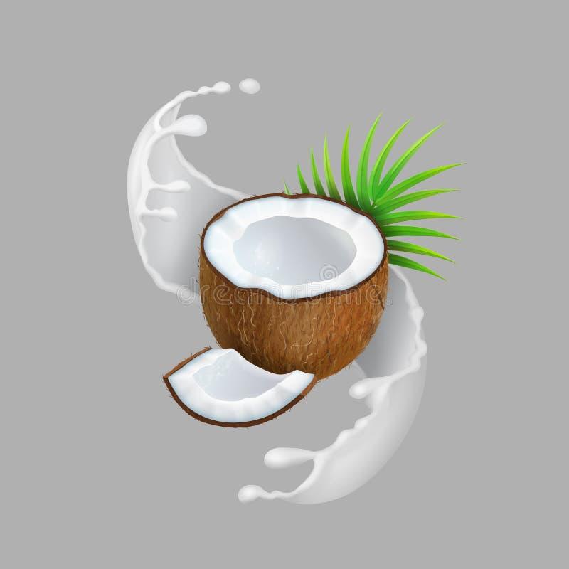 Kokosnuss- und Milchspritzen Realistische Vektorillustration der natürlichen Frucht stock abbildung
