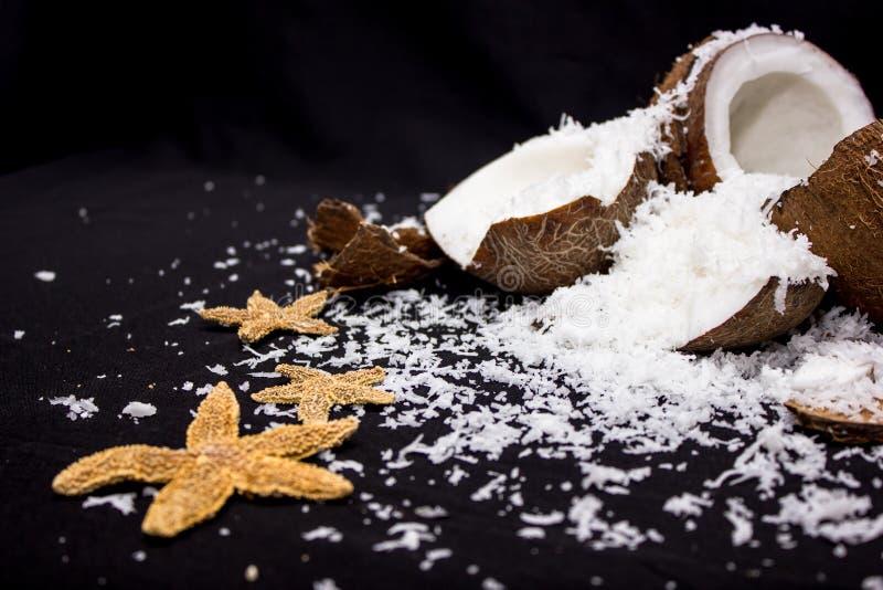 Kokosnuss und Starfish stockfotos