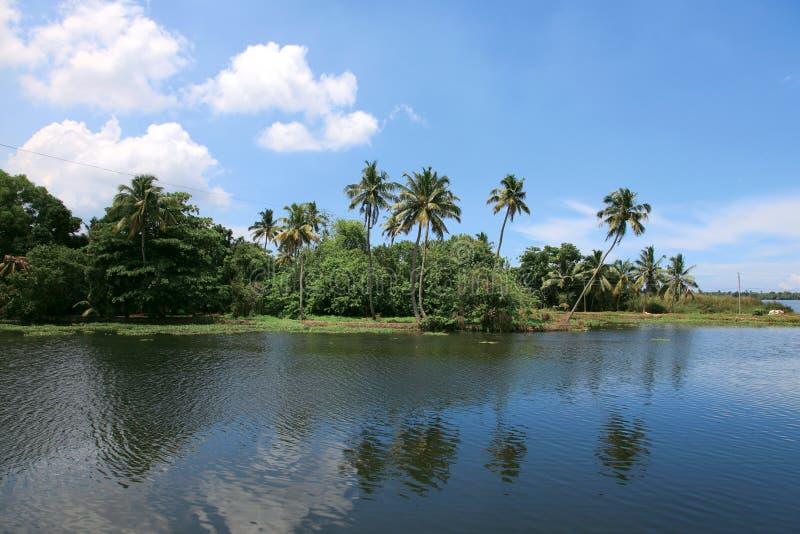 Kokosnussbäume und Stauwasser von Kerala, Indien stockfotografie