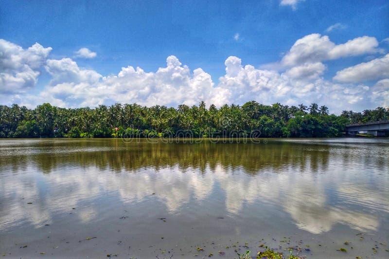 Kokosnussbaumlinie und Wolken-Reflexions-Spiegel-Bild im Fluss stockbilder