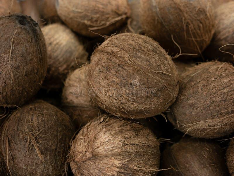 Kokosnussernte viele Kokosnüsse Kokosnuss für Lebensmittelbeschaffenheiten landschaft Ein Hintergrund der Kokosnuss Straßengemüse stockbilder