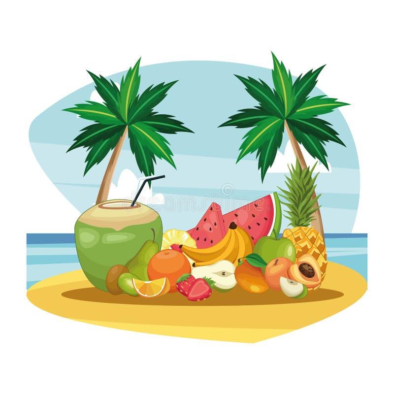 Kokosnussgetränk und -frucht vektor abbildung