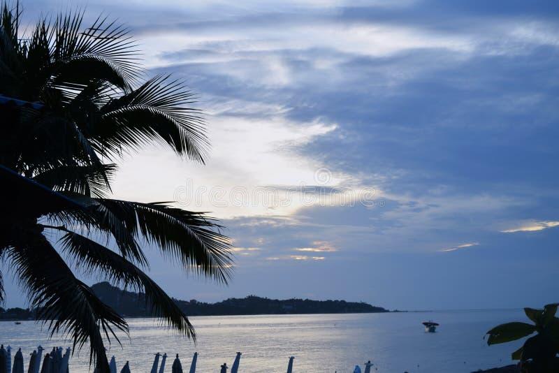 KokosnussPalme Sonnenaufgang-Sonnenuntergang-Himmel-Seeozean-Ferienkonzept stockbild