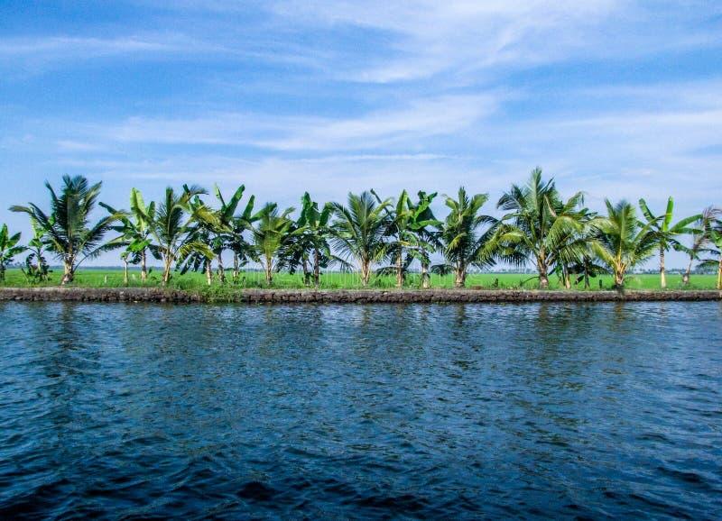 Kokosowa laguna przy Vembanad jeziorem, Kerala, India obraz stock