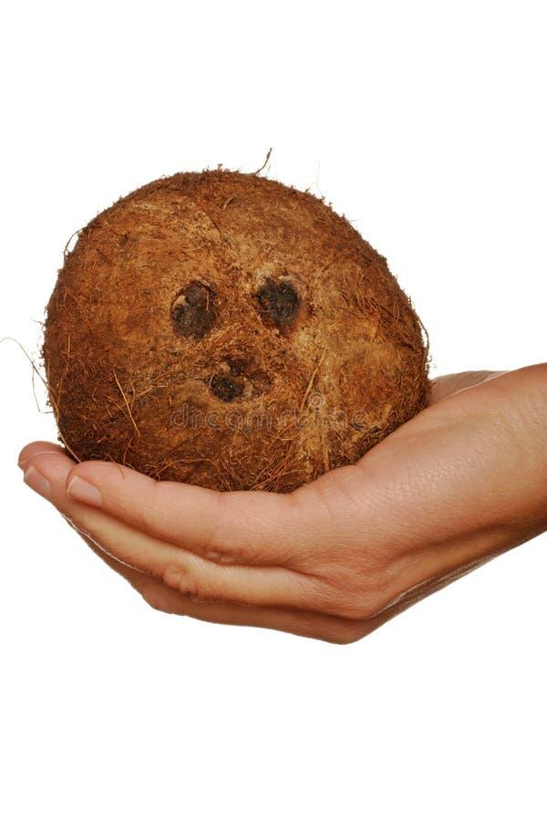 kokosowa twarz zdjęcie stock