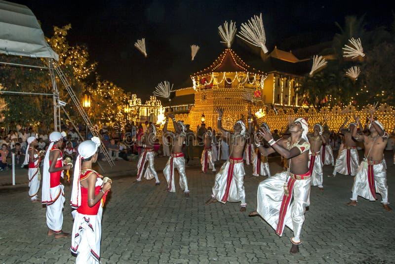Kokosowi kwiatów tancerze wykonują przed świątynią Święta ząb relikwia podczas Esala Perahera w Kandy, Sri Lanka obraz royalty free