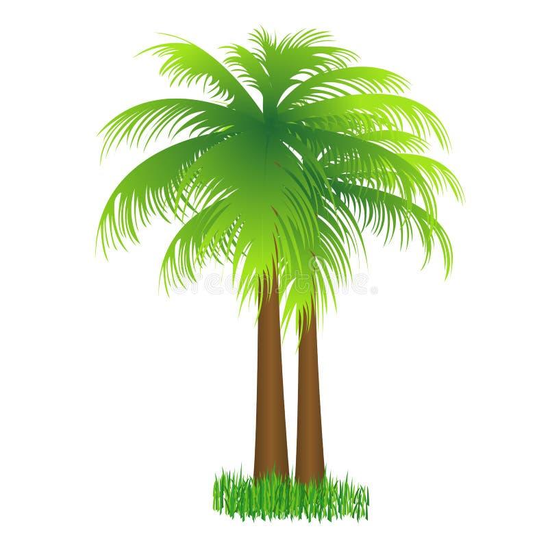 kokosowy drzewo royalty ilustracja