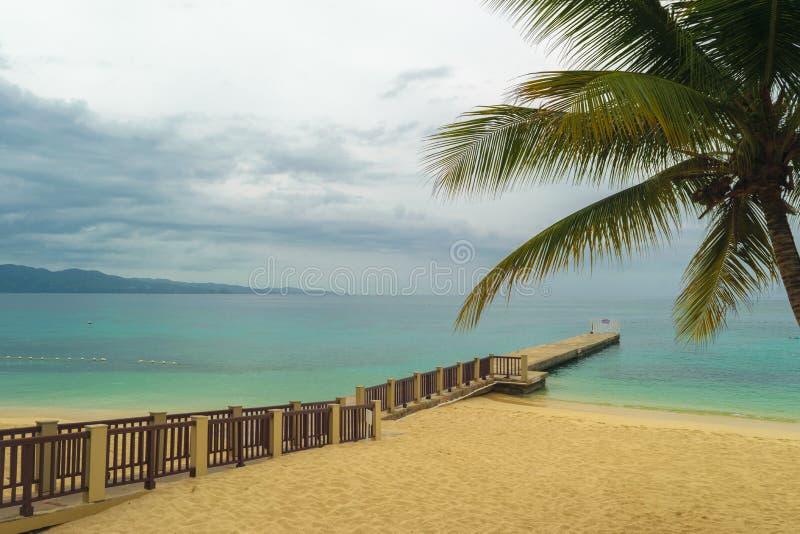 Kokosowy drzewo, boardwalk, jetty i molo na pięknym białym piasku/wyrzucać na brzeg zdjęcia stock