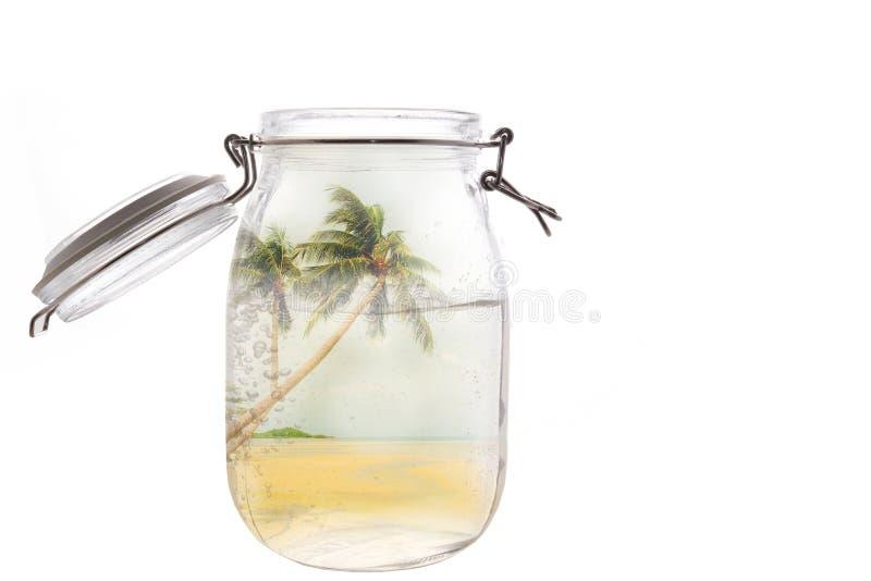 Kokosowy drzewo i plażowy dwoisty ujawnienie z szkło butelką zdjęcia stock