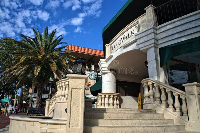 Kokosowy gaj Miami Cocowalk fotografia stock