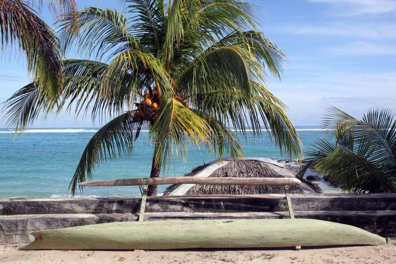 Kokospalm en boot stock afbeeldingen
