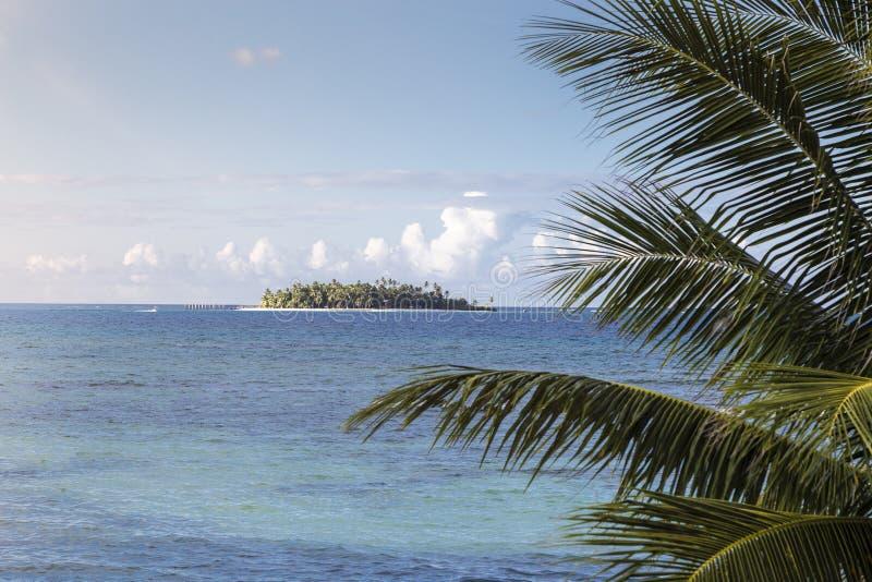 Kokospalmen en eiland in de Caraïben stock afbeelding