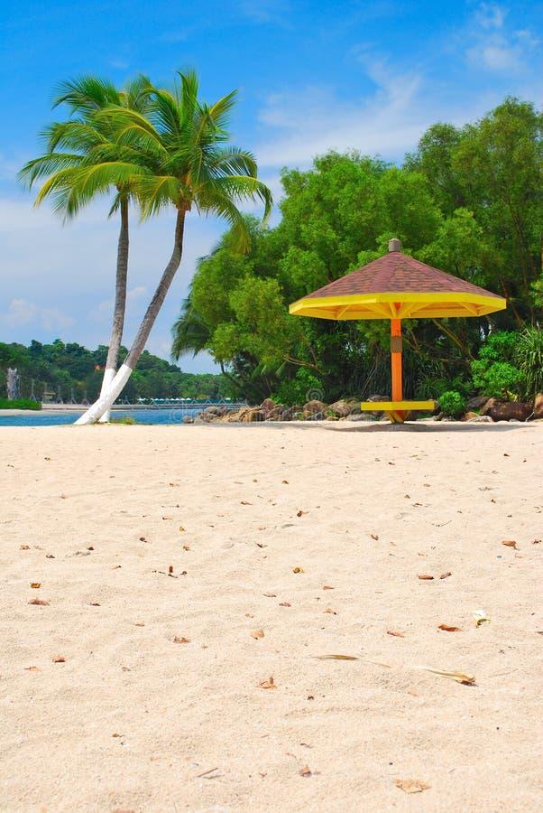 Kokospalmen en hut royalty-vrije stock afbeeldingen