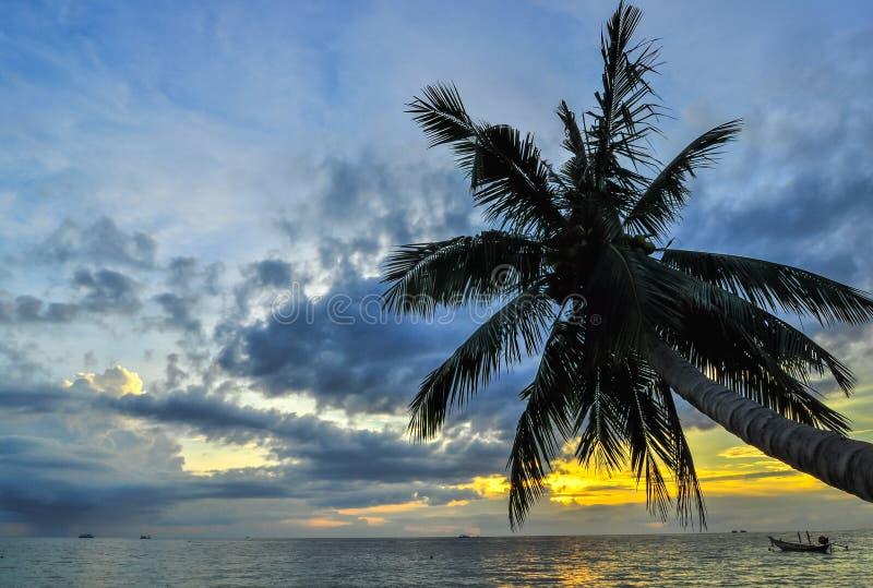 Kokospalmen op zandstrand in keerkring op zonsondergang. Thailand, Koh C royalty-vrije stock afbeelding
