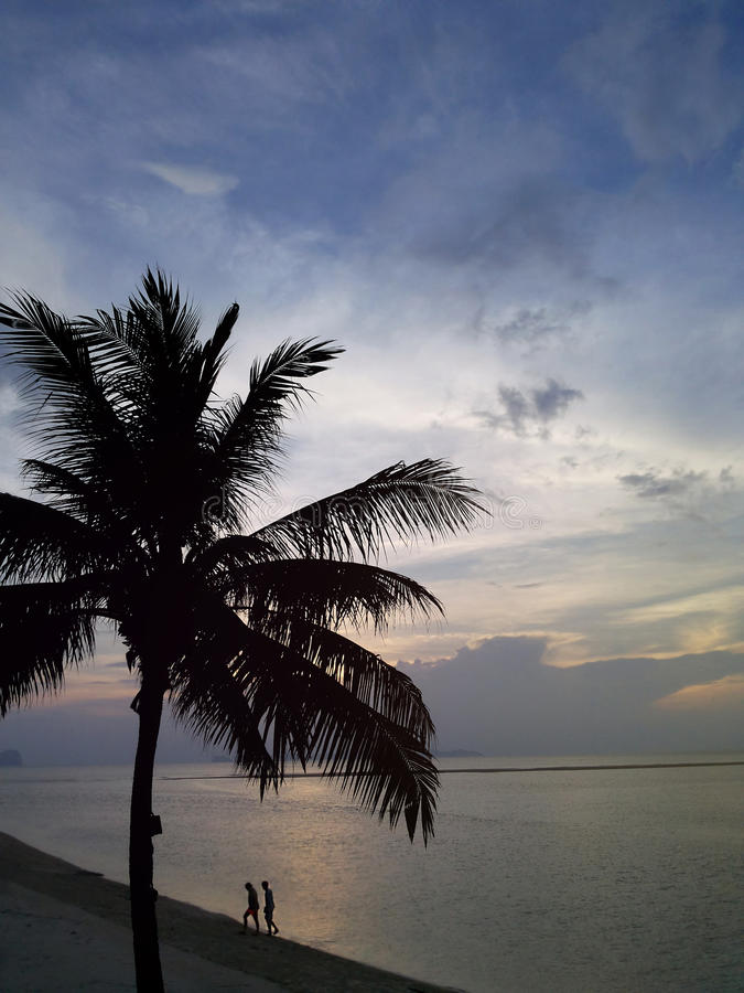 Kokospalmsilhouet en 2 personen bij het avondstrand stock foto's