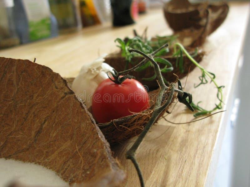 Kokosschalen :: Behälter * Regal royalty free stock photography