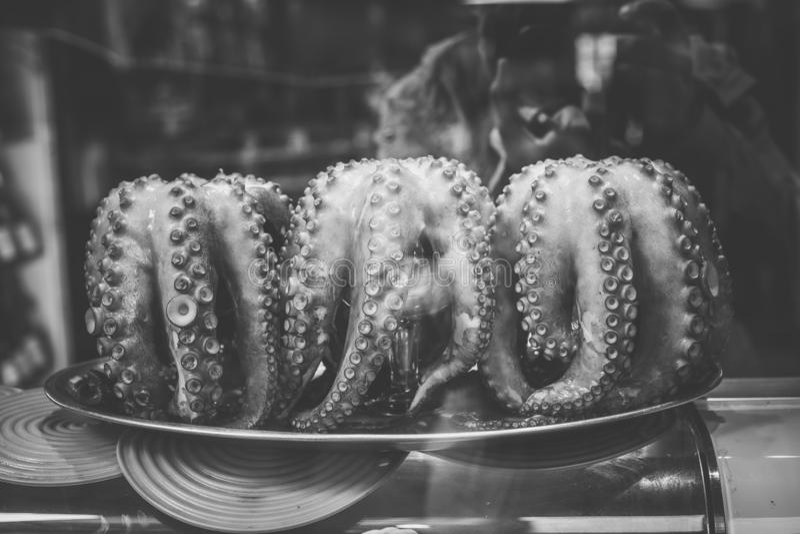 Kokt bläckfiskslut upp, Galicia royaltyfri fotografi