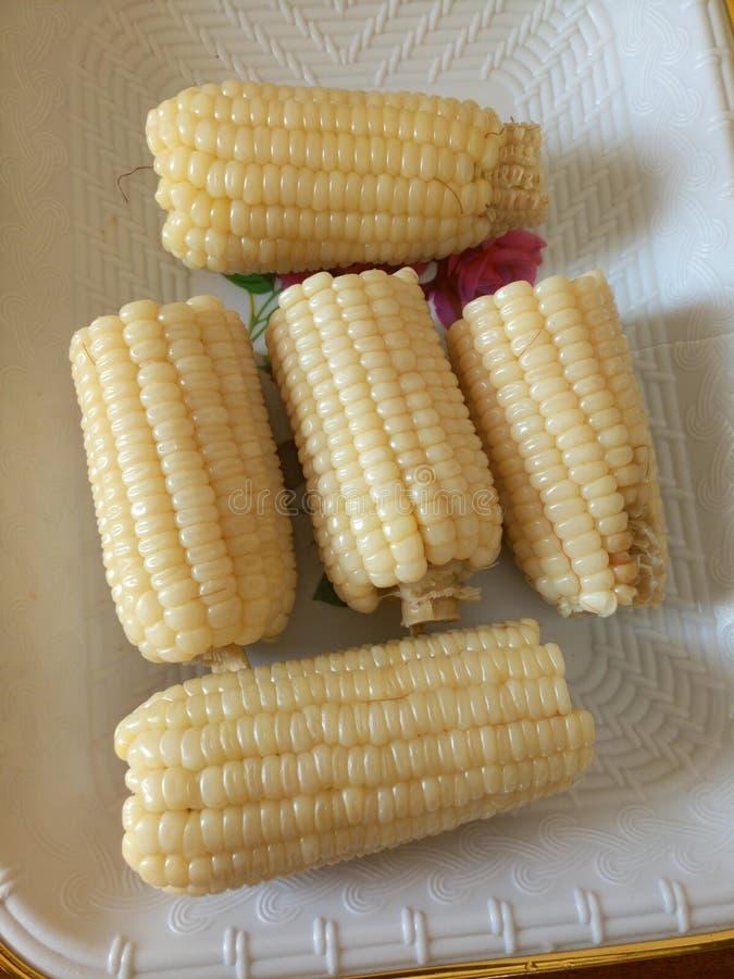 Kokt majs, med koppar arkivbilder