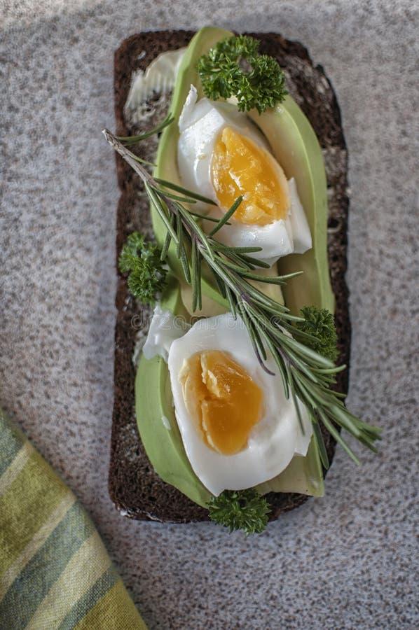Kokta bröd och ägg och rosmarin för avokado royaltyfria bilder