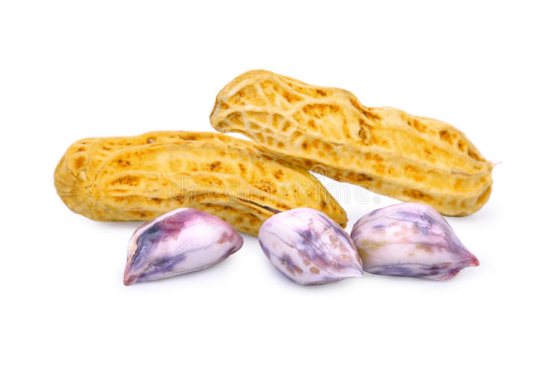 Kokta jordnötter som isoleras på vit royaltyfri bild