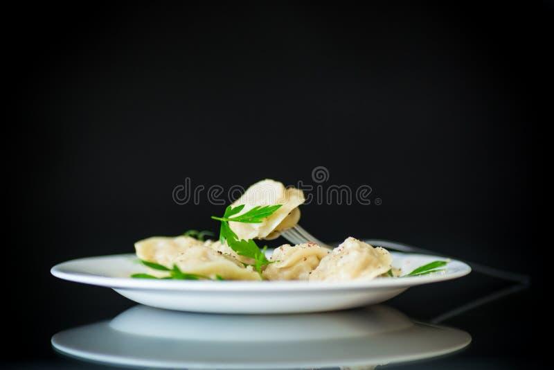 Kokta klimpar med k?tt och kryddor i en platta royaltyfri foto