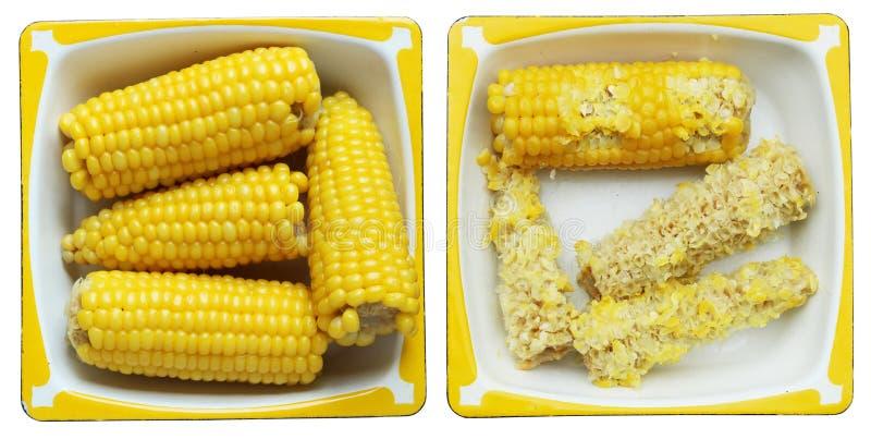 Kokta majskolvar av majs på en rektangulär metallemaljplatta royaltyfria bilder