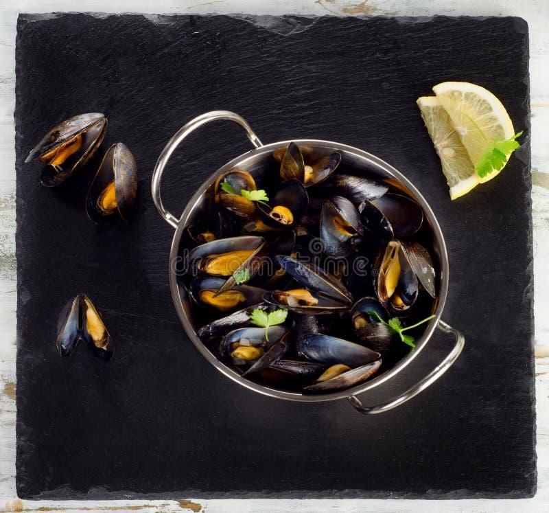 Kokta musslor i matlagningmaträtt på mörk bakgrund arkivbilder