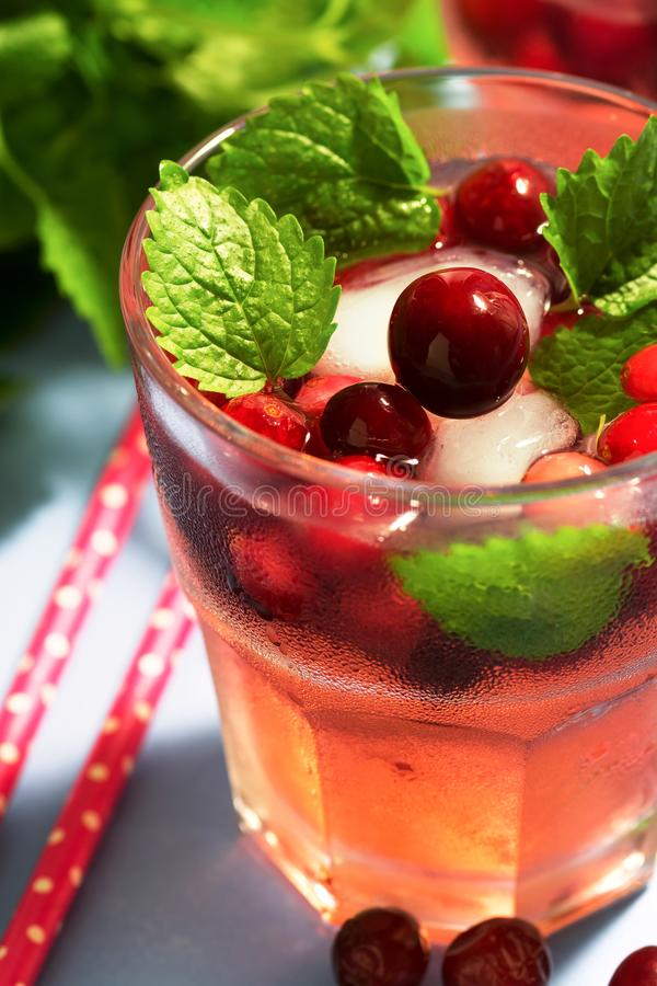Koktajl z cranberries zakończeniem Cranberry napój z lodem i mennicą, selekcyjna ostrość obrazy stock