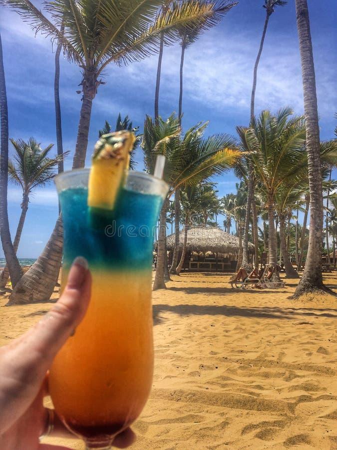 Koktajle na plaży obraz royalty free