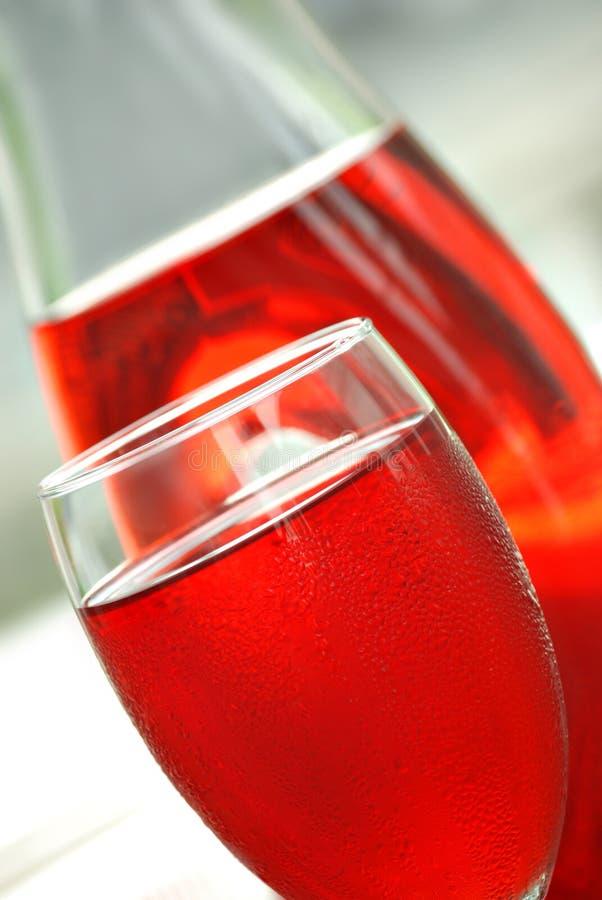 koktajlu cranberry sok fotografia stock
