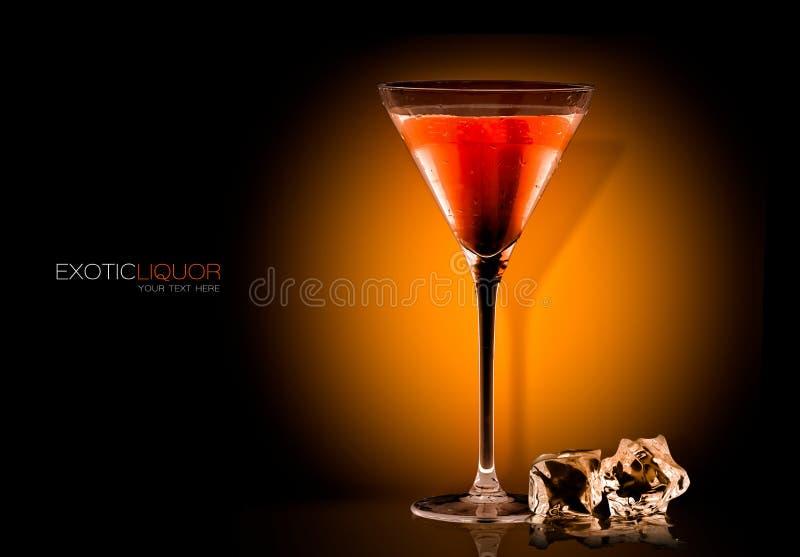 Koktajlu szkło z Tangerine trunku napojem szablonu projekt fotografia royalty free