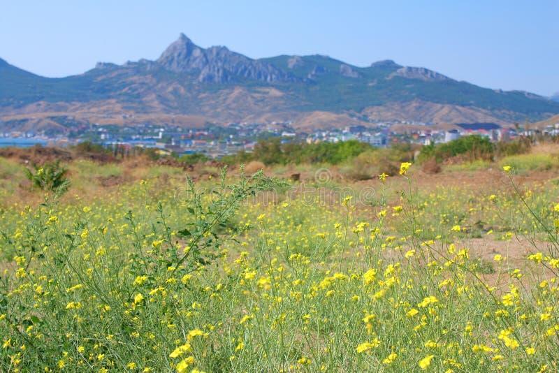 Download Koktebel, Karadag Mountain And Black Sea, Crimea Stock Image - Image: 21544023