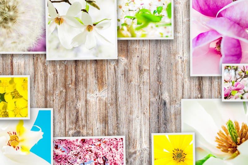 Kolaż kwiaty zdjęcie stock